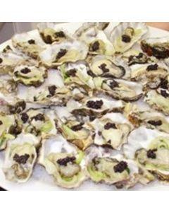 Oysters Marlborough Pacific Half Shell 2 Doz/Frozen
