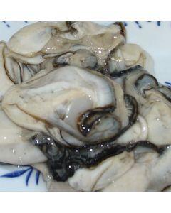 Oysters Pacific Coromandel Shucked 10 Doz/Fresh