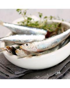 Sardines 1kg/Frozen