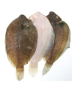 NZ Sole Gilled & Gutted 1kg/Frozen