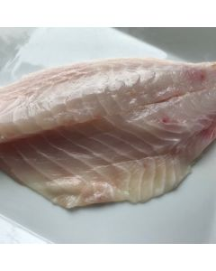 Southern Boarfish Fillets Skin Off Bone Out 500g/Fresh