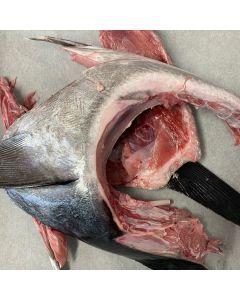 Southern Bluefin Tuna NZ Collars 2kg/Frozen