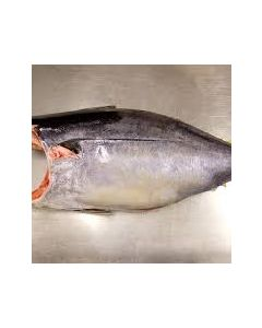 Yellowfin Tuna Fijian Headed & Gutted 10kg+/Frozen