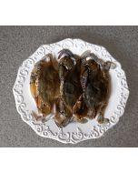 Crab Soft Shell (80-100g) 1kg/Frozen