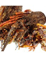 Crayfish Bodies & Heads 1kg/Frozen