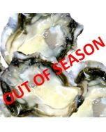 Oysters Pacific Okiwi Bay Half Shell 1 Doz/Fresh - OUT OF SEASON